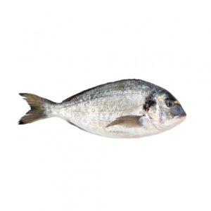 Egész halak