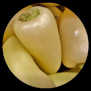 bogyiszlói paprika